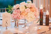 Belair Bay Club / Peaches and Cream Wedding