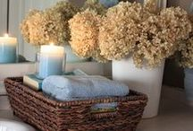 Bathroom Decorations / by Melissa Zuniga