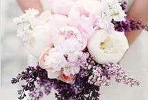 Wedding Flowers / by Cassandra Lynne