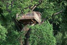 | dream dwellings |