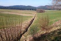 Aktuelles zur Natur in Bayern
