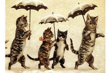 Vintage Cats / by Faye