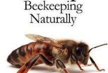 Bee Lovers / Our bees are dying! Information and tips on how to help and how to take care of the ones you have.