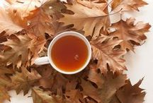 Fall for Tea / Fall is the season for large cups of hot tea... you could say we fall for tea!