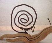 Escargot / snail...