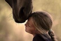 Honorable Horses