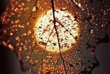 Beautiful <3 / by Marina Sweet
