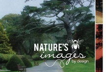Celebrity Gifting / by Nature's Images By Design