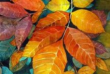 Autumn / Autumn is wonderful with its thousands of colours!