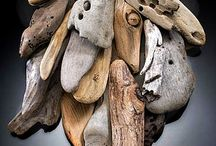 The Beauty of Driftwood