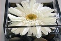 Flower Arrangements / by Alyssa Atkinson