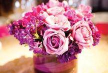 Our Wedding Day! 10.4.14 / by Nicole Elizabeth