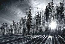 CANAdianA / #Canada #History #Canadian #scenes #landscape #beauty