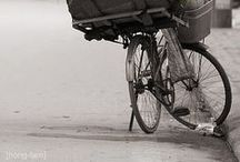 BIKESnSPOKES / Bicycles and bikes are a wonderful subject for art and imagery as they are linked with youthfulness and fun
