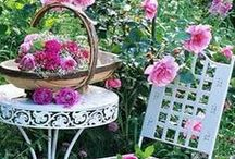 gardenZING / Creative gardens and plants with more than a green thumb