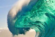 WATERwings / Surfs up