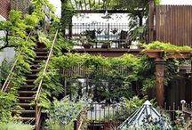 Construction/Garden