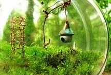 Fairy Gardens and Terrariums / by Pam Morris