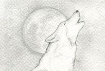 Watercolor Pencil Art & Drawing Stuff