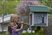 Little Free Libraries / by Elizabeth Strain