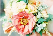 Beautiful Blooms / Bouquets and Floral Arrangements