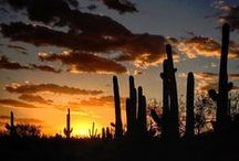 Scenic Tucson / Explore the natural beauty of Tucson! Tucson's astounding  natural environment is an important, distinctive element of the destination's experience.