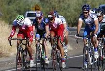 El Tour de Tucson / Held annually the Saturday before Thanksgiving, El Tour is a fun adventure ride attracting over 9,000 cyclists of all ages and abilities from throughout the United States and worldwide, consisting of novice, intermediate, advanced, and professional riders.
