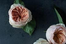 bouquets and boutonnières / Floral inspiration for your wedding day