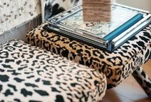 Animal Instincts / Leopard and zebra print, horses, dogs and more!  This is a celebration of animal-inspired decor.