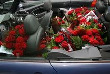 Roses are red, violets are blue, its valentines day too / Cars and any related article to valentines day.