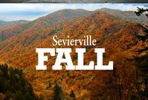 Fall / Fall travel, beautiful scenery and all things Harvest Fest in Sevierville and the Smoky Mountains.