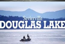 Douglas Lake / Known for its Bass and Crappie fishing, this beautiful lake with mountain views is perfect for recreation!