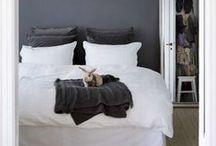 Bedroom / by Sarah Vespasian