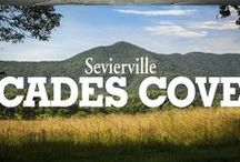 Cades Cove / Nature and History