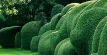 Best of Grass & Hedge