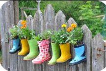 Gardening / creative ideas for gardening