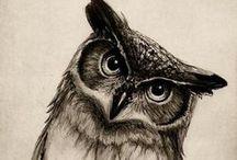 Owly / i'm an owlover #owl #owls #owlover #art #cuteowl
