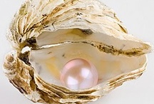 The World's My Oyster / by Shaleen Parmenter McLaren