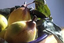 kweeperen | quinces / quince recepies and pictures
