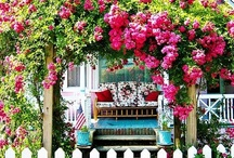 garden and outdoor ideas / by Laura