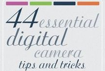 Photography Tips and Tricks / Helpful photography tips and tricks / by Sarah M Schultz Designs