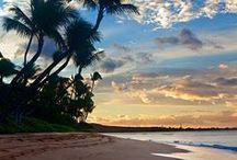 beachy / by Phyllis Lawson
