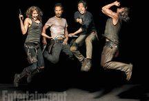 ~The Walking Dead~ / All things Walking Dead!!
