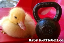 Baby Kettlebells / Made from the same cast iron as our original hardcore Warrior Hardware kettlebells, first we started with the exact dimensions of our favorite sized bell - the 1.5pood 24kg!  Next we forged each kettlebell one by one only to send it through the same painting process as our bigger bells.  The result is the cutest most manly piece of adorable in the kettlebell world.  http://babykettlebell.com / by Baby Kettlebell