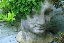 garden . SUCCULENT & SEDUM / by Denise Mares