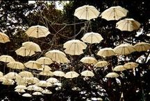 Utterly Umbrellas / I have a thing for umbrellas. I adore them. / by Awanthi Vardaraj [The Writing Cook™]
