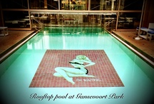 Swimming Pools - Jump In! / some cool pools - don't forget your towel / by Karen Bigos