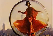 Orange Crush / by Bernadette Pinkard
