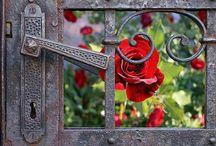 garden . GATE / by Denise Mares
