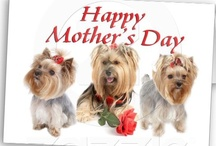 Father And Mother Day Greetings / by Tamera Howell